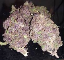 Buy weed cheap online