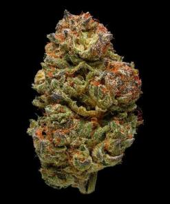 Buy Amnesia Haze cannabis