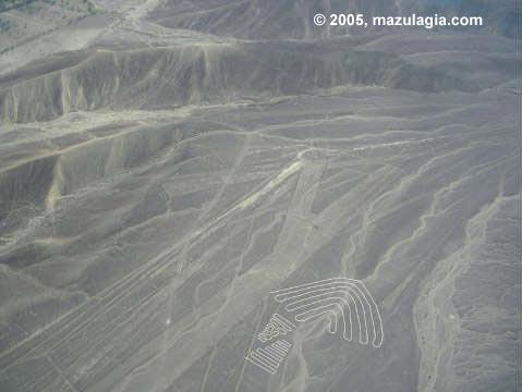 Alas. Líneas de Nazca 5