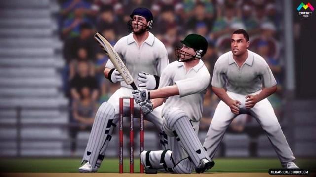 Ashes-Cricket-2013-game-megacricketstudio-img3