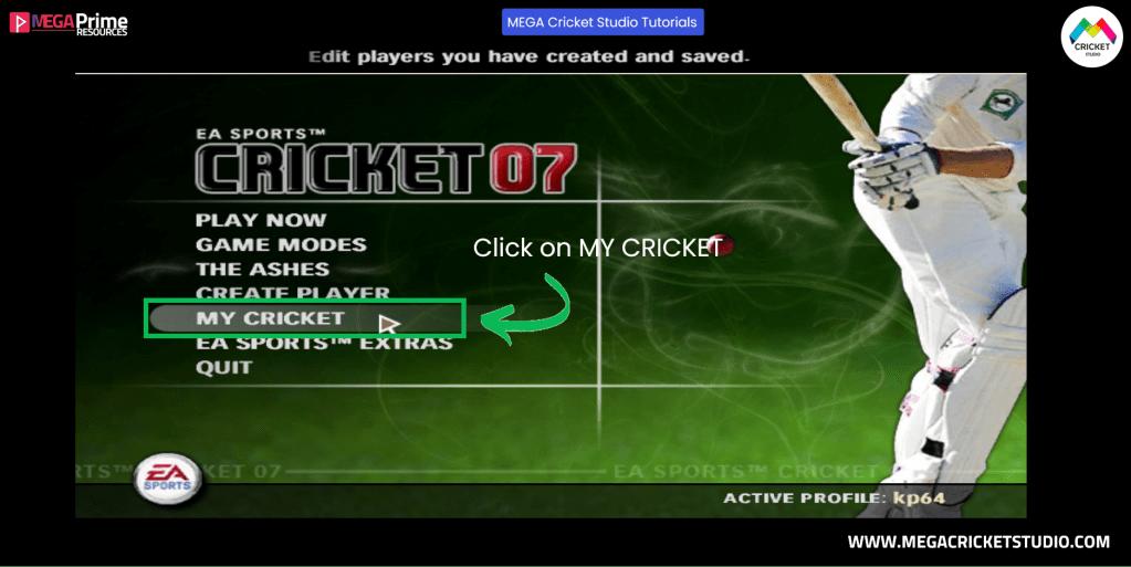 How to play full screen in ea cricket 07 megacricketstudio.com