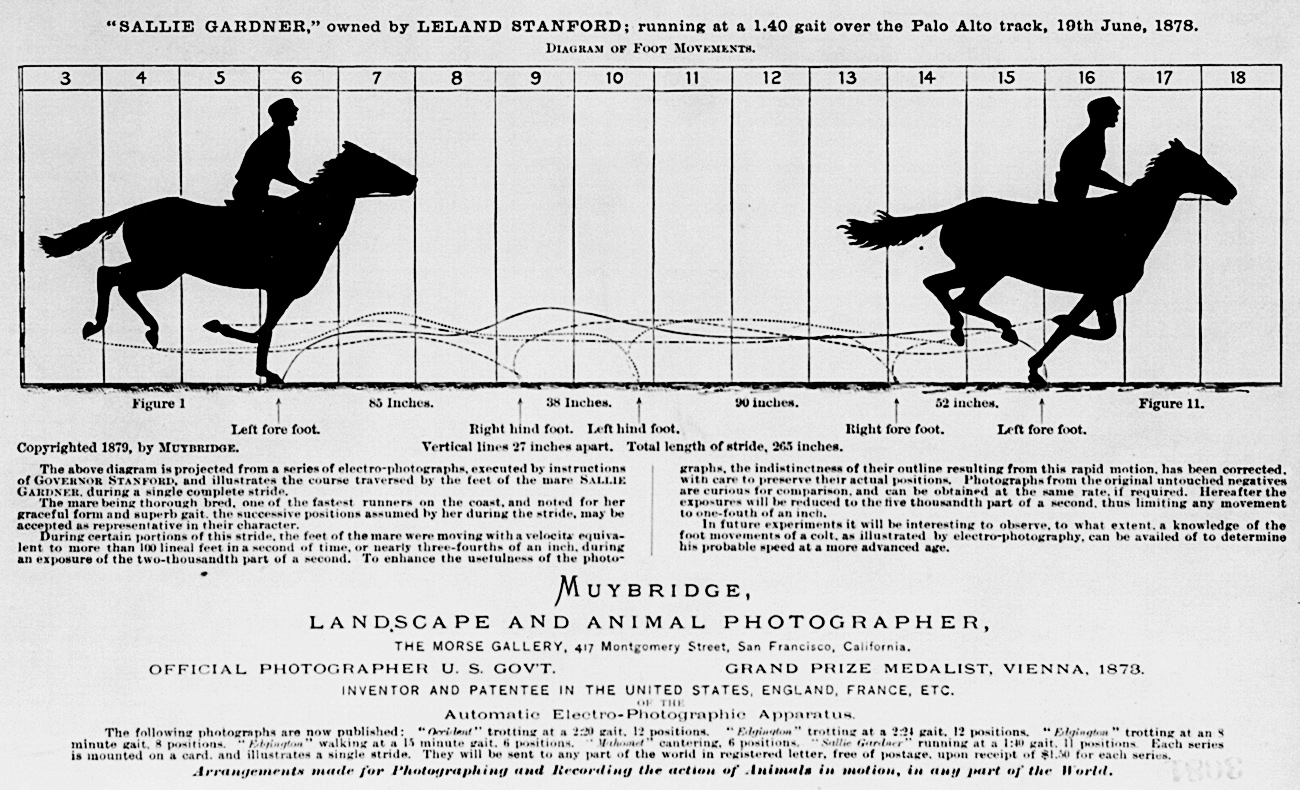 hight resolution of eadweard muybridge horse in motion infographic from 1878