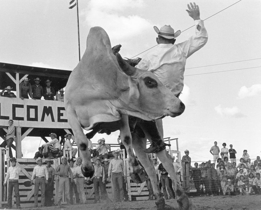 Glen Adair. Sonoita, Arizona. 1964. Louise Serpa :: Courtesy Tucson Rodeo Committee
