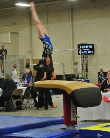 Queen of Hearts Invitational 2014 Vault Handstand - Level 7