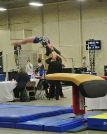 Queen of Hearts Invitational 2014 Vault Flight - Level 7
