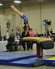 Queen of Hearts Invitational 2014 Vault 2 Handstand - Level 7
