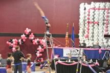 Flips Invitational 2015 Bars Giant - Level 7