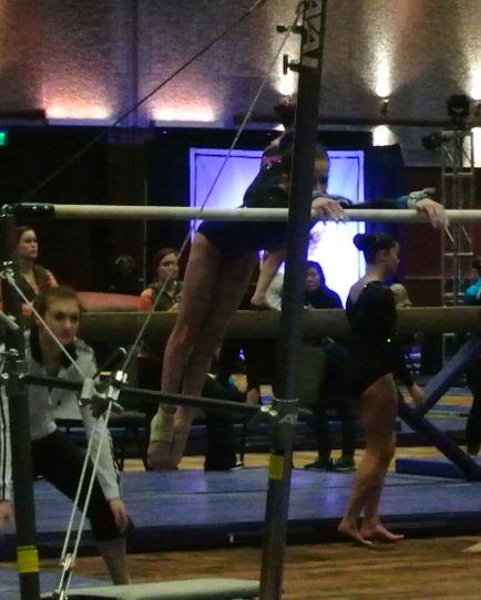 Battle in Bellevue 2015 Bars Mount - Level 7