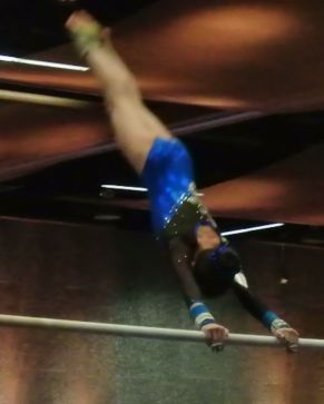 Battle in Bellevue 2015 Bars Giant - Level 7