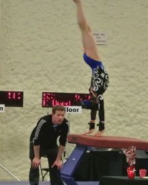 Queen of Hearts Invitational 2015 Vault 2 Handstand - Level 7