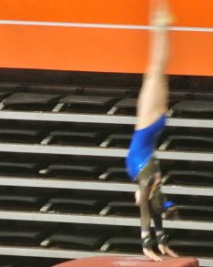 Idaho State Championships 2015 Vault Handstand - Level 7