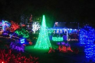 Botanical Gardens 107