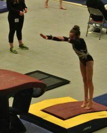 Region 2 Championships 2016 Vault Handstand - Level 8
