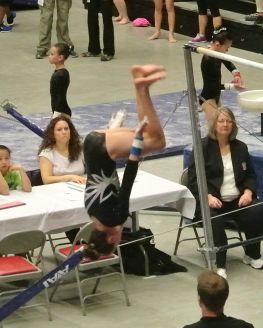 Region 2 Championships 2016 Bars Double Back Tuck - Level 8