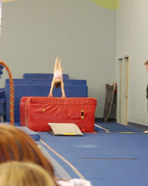 Teddy Bear 2010 Vault Handstand - Level 4