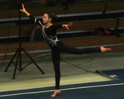 Idaho State Championships 2017 Warm-up with another stretch of those graceful arms and legs - Level 8