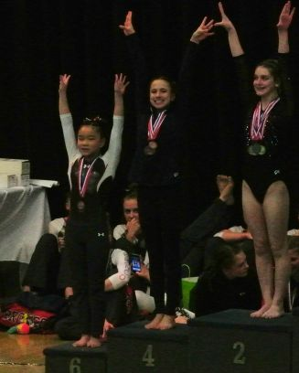 Idaho State Championships 2017 All-Around Awards - Fourth Place - Level 8