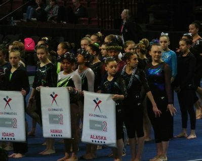 Region 2 Championships 2017 - March-In with Banners - Level 8