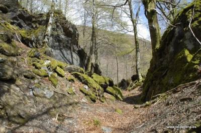 Trinchera en Zubibeltzeko Bizkarra