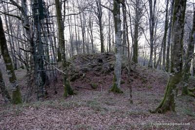 Ruinas junto a palomera