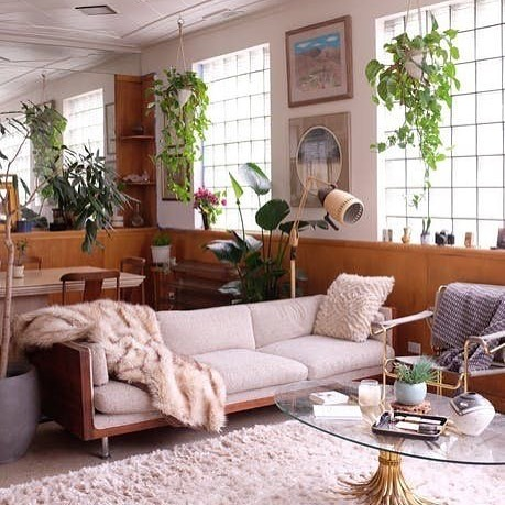Inspiring Interior: Kimothy Joy's light & plant filled living space is giving me the design inspiration I need on this sloooow Monday morning. It IS Monday, right? *The throw is faux, of course* 🌿 House tour via @apartmenttherapy