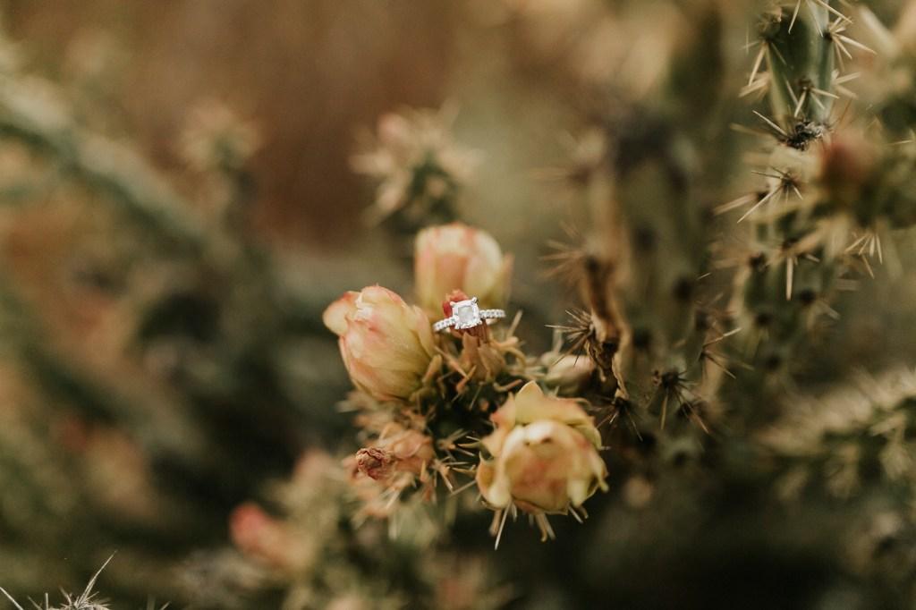 Megan Claire Photography | Arizona Wedding and Engagement Photographer. boho arizona desert engagement session at sunset @meganclairephoto