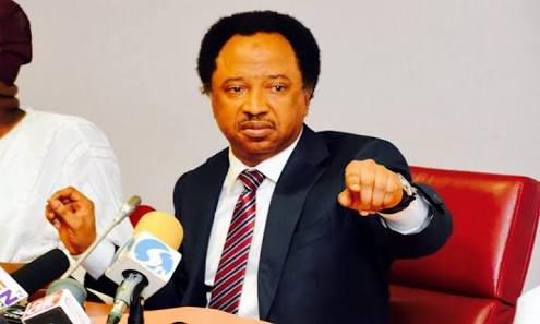 Shehu Sani Replies APC: You're Promoting Criminal Change