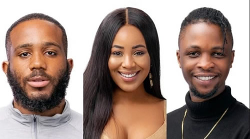 BBNaija 2020: I made a stupid decision picking Kiddwaya – Erica