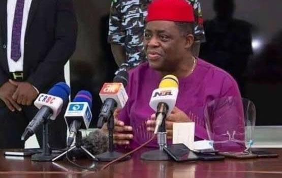 Outburst: I regret my actions, forgive me – Fani-Kayode begs journalist, NUJ