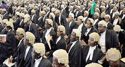 70.9% candidates successful at Law School final exams