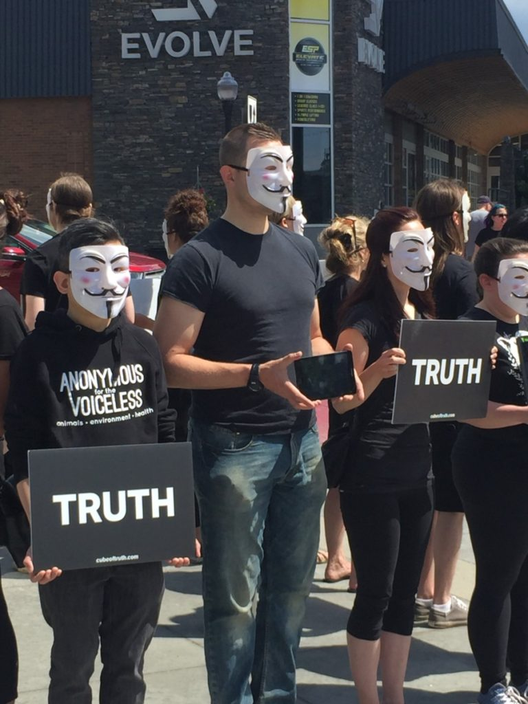 """The Cube of Truth: people stand in a cube formation, dressed in black wearing Guy Fox masks and holding signs saying """"Truth"""" and laptops displaying video footage from the animal agriculture industry."""