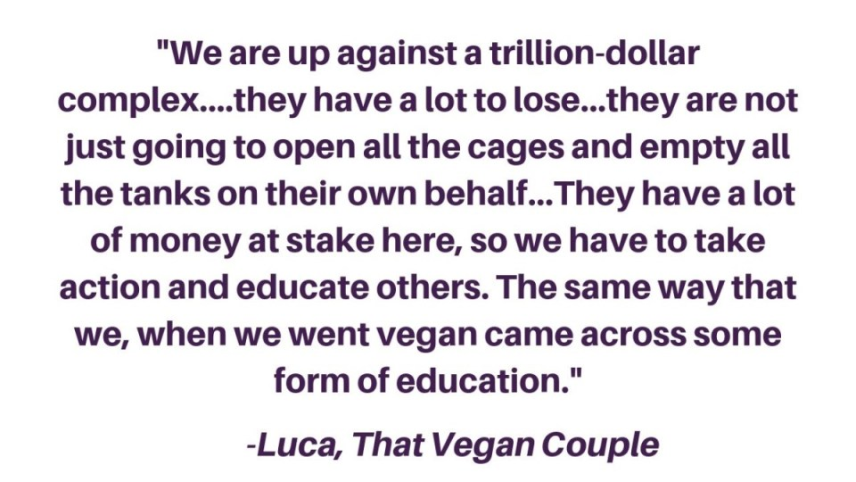 """""""We are up against a trillion-dollar complex....they have a lot to lose...they are not just going to open all the cages and empty all the tanks on their own behalf...They have a lot of money at stake here, so we have to take action and educate others. The same way that we, when we went vegan came across some form of education."""" -Luca, That Vegan Couple"""