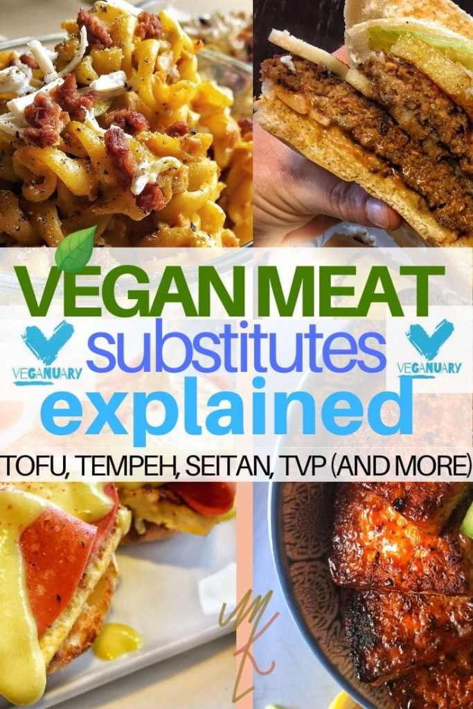 FOUR DIFFERENT VEGAN MEAT IMAGES: TOFUR, TEMPEH, SEITAN AND TVP