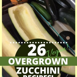 26 overgrown zucchini recipes shown over a photo of an extra large zucchini that's been hollowed out