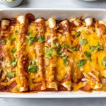 Shredded Pork Enchiladas in a baking dish with cheese on top.