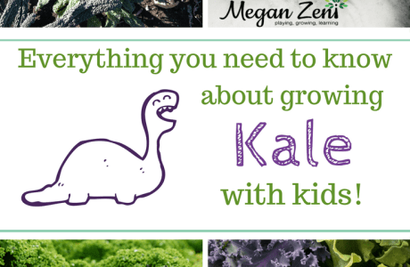 How to Grow Kale With Kids