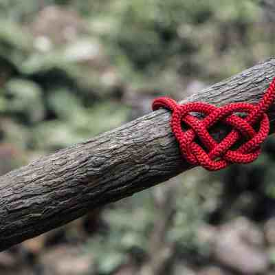 Valentine's Day Ideas for Your Outdoor Classroom