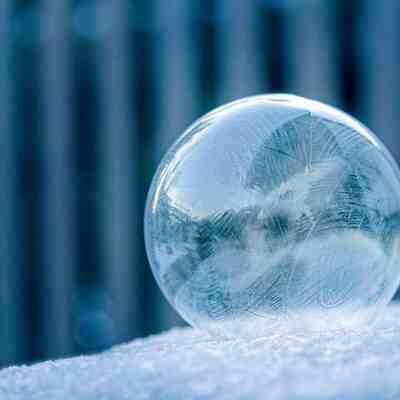 Nature Inspired Ice Art