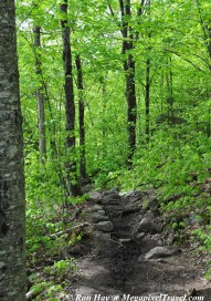 RON_3241-Marcy-trail