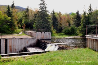 RON_3249-Marcy-Dam