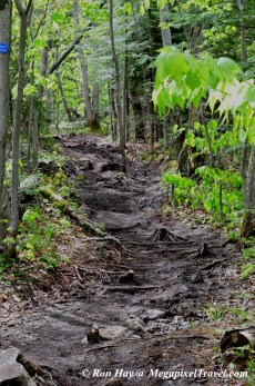 RON_3258-Mt-Marcy-trail