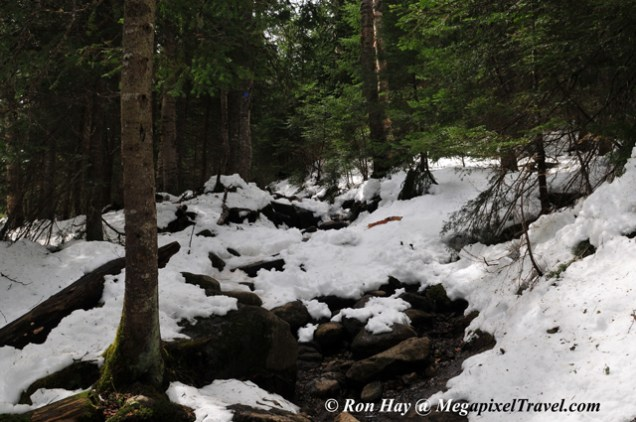 RON_3302-The-trail-and-snow