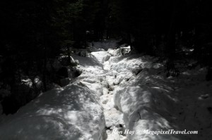 RON_3319-Snowy-trail