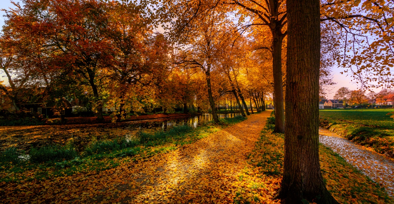 Funny Fall Wallpaper 5 Autumn Nature Photos 5 őszi T 225 Jk 233 P Megaport Media
