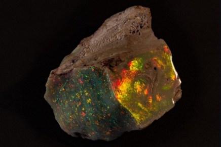 Raro ópalo valorado en $675.000 hizo su debut público por primera vez desde su descubrimiento en 1946
