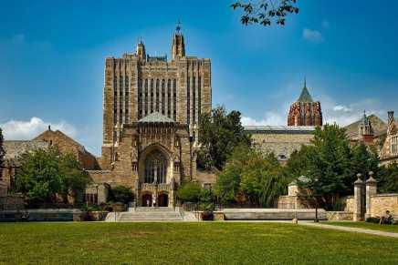 Estos son los 7 TÍTULOS universitarios más caros del mundo