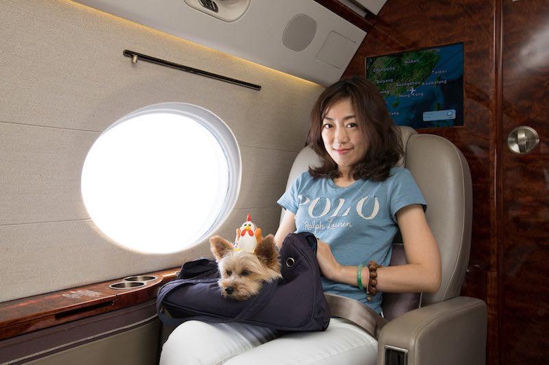 Life Travel: Esta agencia de viajes de lujo se especializa en volar a perros y sus dueños en jets privados
