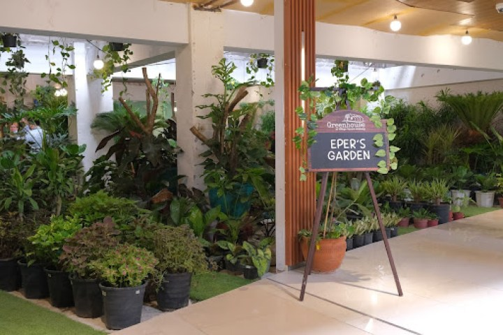 Eper's Garden (2/F) has a variety of plants in all sizes