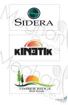 2009 - Logo