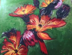 Devil's Paintbrush - Wildflower SOLD